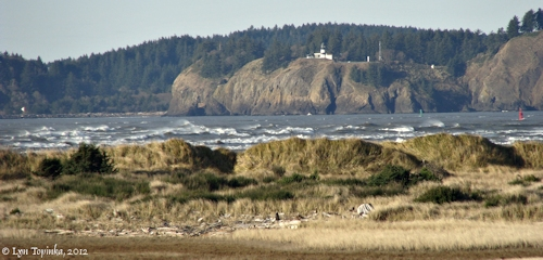 Image, 2012, Cape Disappointment from Clatsop Spit, Oregon, click to enlarge