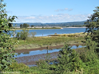 Image, 2012, Columbia River from Clifton Road, Oregon, click to enlarge