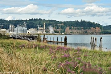 Image, 2012, Port Westward, Oregon, click to enlarge