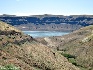 Image, 2012, Sand Spring Canyon, Klickitat County, click to enlarge