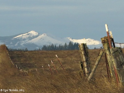 Image, 2013, Cascade foothills, as seen from Mount Pleasant, Washington, click to enlarge