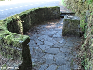 Image, 2014, Ainsworth State Park, Historic Columbia River Highway, click to enlarge
