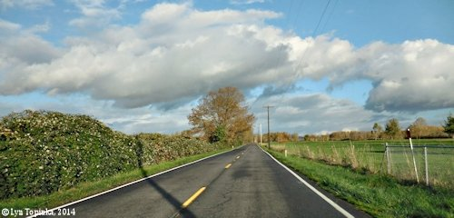 Image, 2014, Lower River Road, Vancouver, Washington, click to enlarge