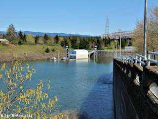 Image, 2014, Bonneville Locks from Hamilton Island, click to enlarge