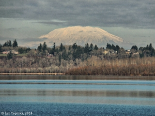 Image, 2014, Mount St. Helens, Vancouver Lake, Washington,  click to enlarge