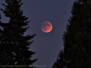 Image, 2015, Lunar Eclipse, click to enlarge