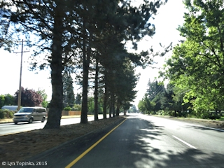 Image, 2015, Mill Plain Road, Vancouver, Washington, click to enlarge