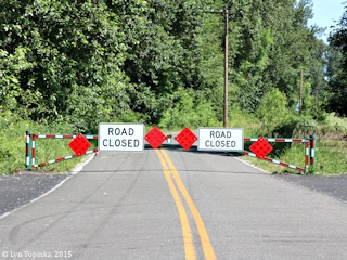 Image, 2015, Lower River Road, Knapp Landing, Vancouver, Washington, click to enlarge