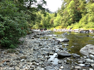 Image, 2015, Washougal River at Public Fishing, click to enlarge