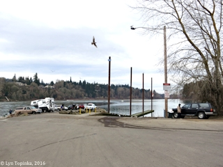 Image, 2016, Willamette River and Meldrum Bar Park, Oregon, click to enlarge