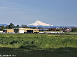 Image, 2017, Mount Hood, Oregon, and Pearson Field, Washington, click to enlarge
