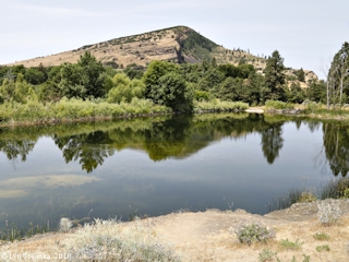 Image, 2018, Kolk pond at Columbia Gorge Discovery Center, click to enlarge
