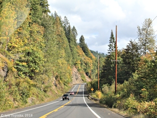 Image, 2018, Lewis River Road, Woodland, Washington, click to enlarge